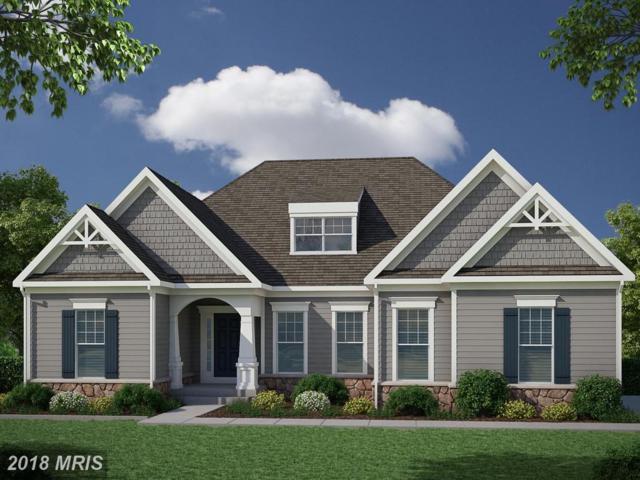 8709 Formation Drive, Fredericksburg, VA 22407 (MLS #SP10298300) :: Explore Realty Group