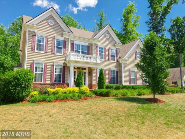 12134 Sawhill Boulevard, Spotsylvania, VA 22553 (MLS #SP10303725) :: Explore Realty Group