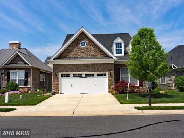 12406 Regiment Lane, Fredericksburg, VA 22407 (#SP10317875) :: Green Tree Realty