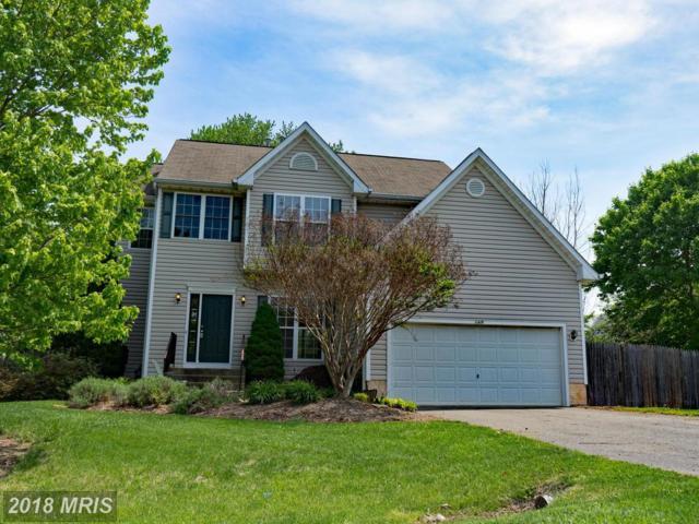 11419 Chancellor Park Drive, Fredericksburg, VA 22407 (#SP10317973) :: Green Tree Realty