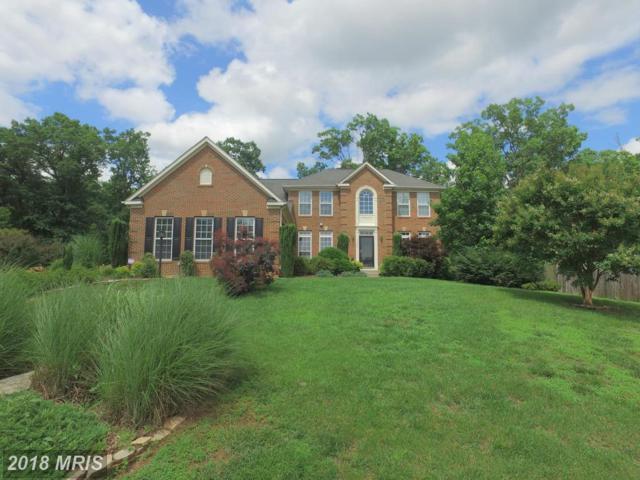 11330 Long Branch Way, Fredericksburg, VA 22408 (#SP10317980) :: Green Tree Realty