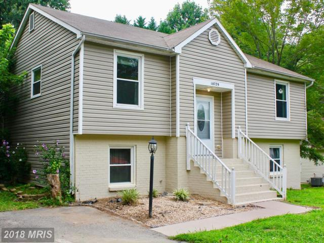 10729 Cobblestone Drive, Spotsylvania, VA 22553 (#SP10322729) :: Browning Homes Group