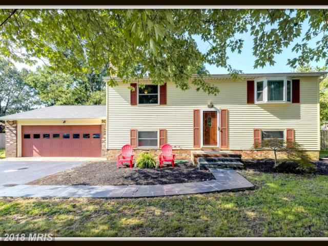 5528 Tallow Street, Fredericksburg, VA 22407 (#SP10324066) :: RE/MAX Cornerstone Realty