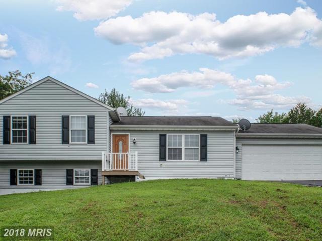6612 Green Arbor Drive, Fredericksburg, VA 22407 (#SP10324509) :: RE/MAX Cornerstone Realty