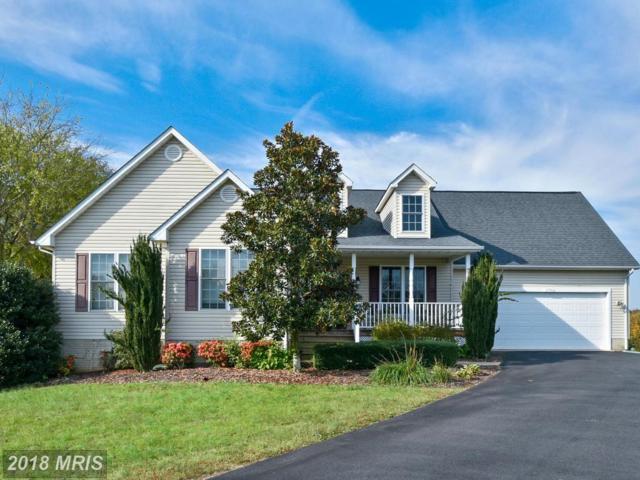 15706 Loblolly Lane, Mineral, VA 23117 (#SP10325979) :: Keller Williams Pat Hiban Real Estate Group