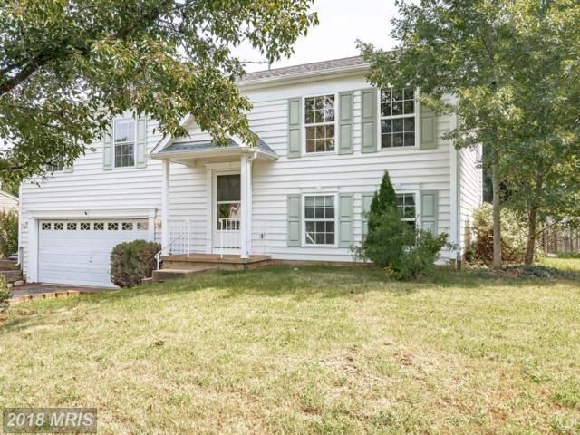 5903 Cascade Drive, Fredericksburg, VA 22407 (#SP10326270) :: RE/MAX Success