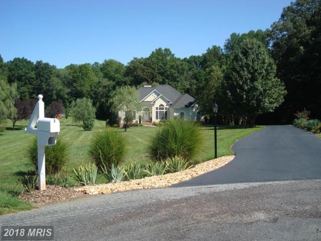 5806 Willow Tree Court, Mineral, VA 23117 (#SP10329393) :: Keller Williams Pat Hiban Real Estate Group