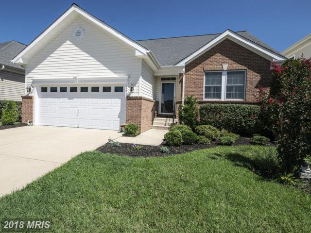 6215 Dranesville Drive, Fredericksburg, VA 22407 (#SP10329985) :: RE/MAX Gateway