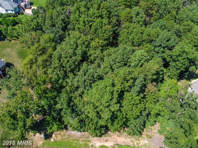 11421 Bluffs Ridge, Spotsylvania, VA 22551 (#SP10330381) :: Eric Stewart Group