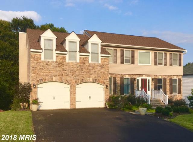 10313 Augusta Court, Fredericksburg, VA 22408 (#SP10350697) :: RE/MAX Gateway