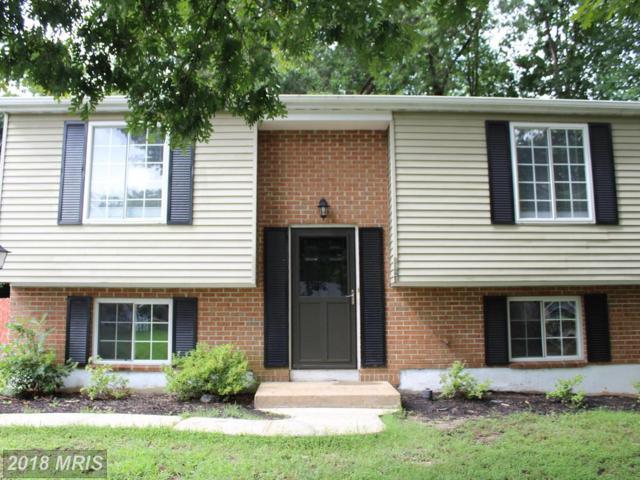 5524 Slater Street, Fredericksburg, VA 22407 (#SP9011865) :: Bob Lucido Team of Keller Williams Integrity
