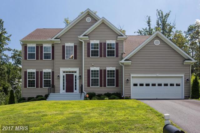 36 Noel Drive, Fredericksburg, VA 22408 (#SP9733999) :: LoCoMusings