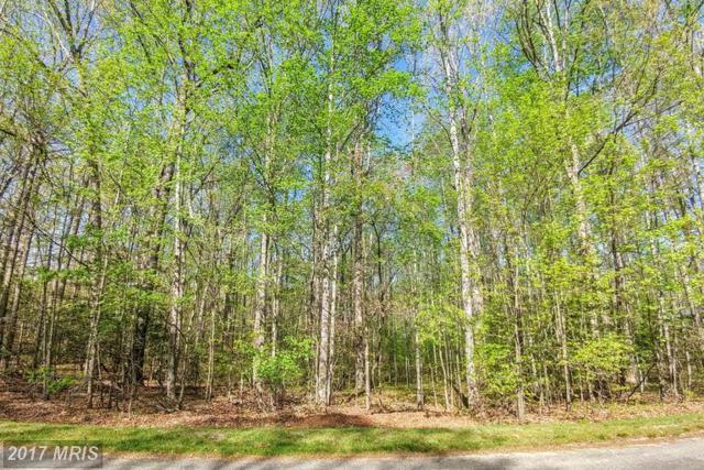 10010 Cherokee Lane, Spotsylvania, VA 22553 (#SP9919244) :: LoCoMusings