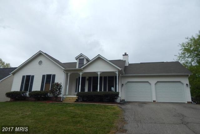 11912 Buttercup Lane, Fredericksburg, VA 22407 (#SP9920718) :: LoCoMusings