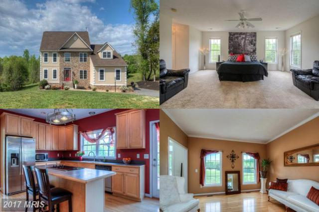 7012 Whitetail Court, Fredericksburg, VA 22407 (#SP9929751) :: LoCoMusings