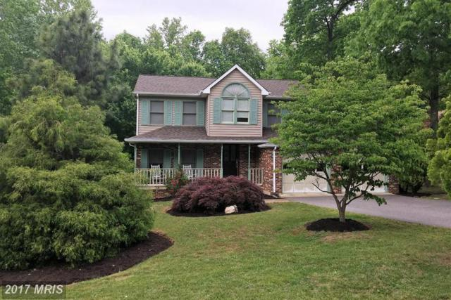10814 Cedar Post Lane, Spotsylvania, VA 22553 (#SP9935534) :: LoCoMusings