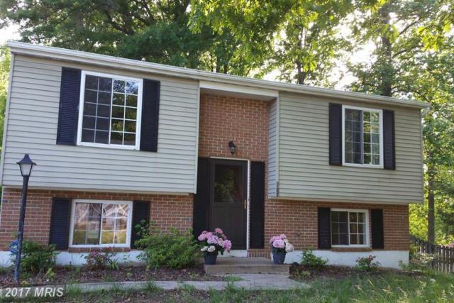 5524 Slater Street, Fredericksburg, VA 22407 (#SP9941404) :: LoCoMusings