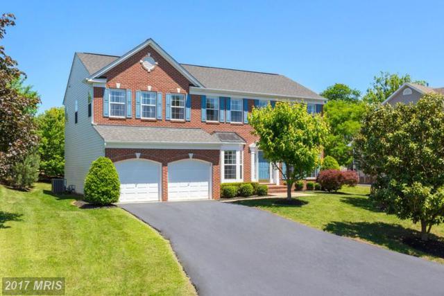 5503 Heritage Hills Circle, Fredericksburg, VA 22407 (#SP9951224) :: LoCoMusings