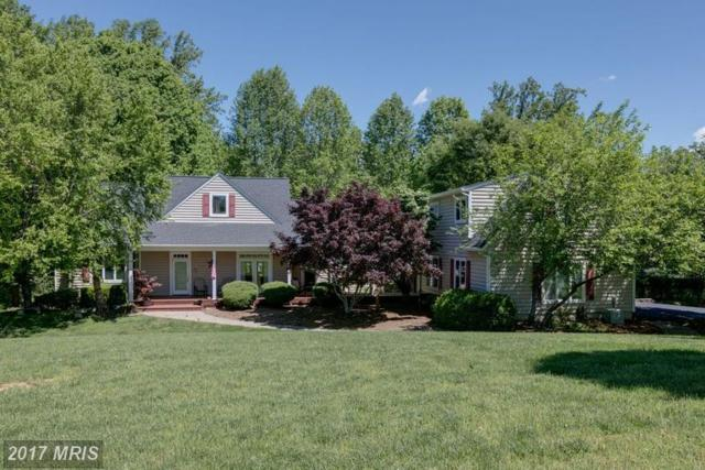15503 Wynd Court, Mineral, VA 23117 (#SP9957457) :: LoCoMusings