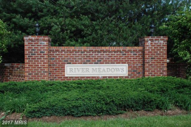11615 River Meadows Way, Fredericksburg, VA 22408 (#SP9960004) :: Pearson Smith Realty