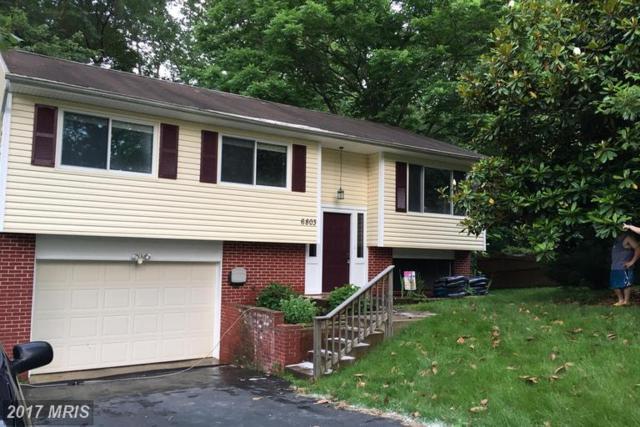 6803 Sparrow Lane, Spotsylvania, VA 22553 (#SP9960680) :: LoCoMusings