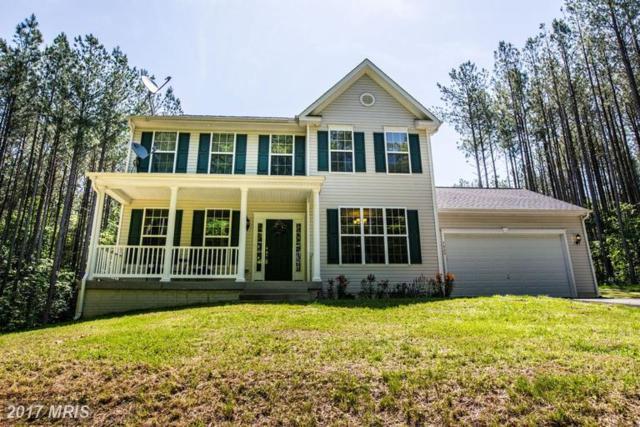 7025 Anna Pine Lane, Spotsylvania, VA 22551 (#SP9961632) :: LoCoMusings