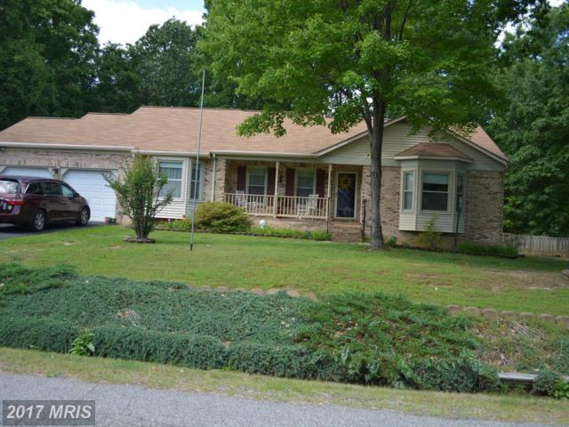 10725 Lovett Drive, Fredericksburg, VA 22407 (#SP9962224) :: LoCoMusings
