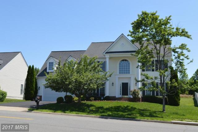 11903 Big Ben Boulevard, Fredericksburg, VA 22407 (#SP9965762) :: Pearson Smith Realty