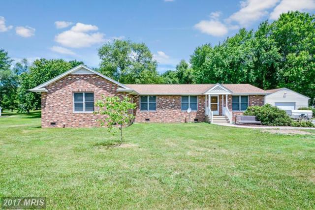 2413 Pinecrest Lane, Fredericksburg, VA 22408 (#SP9966805) :: LoCoMusings