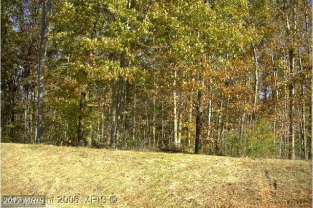 Bazzanella Drive, Mineral, VA 23117 (#SP9970076) :: LoCoMusings