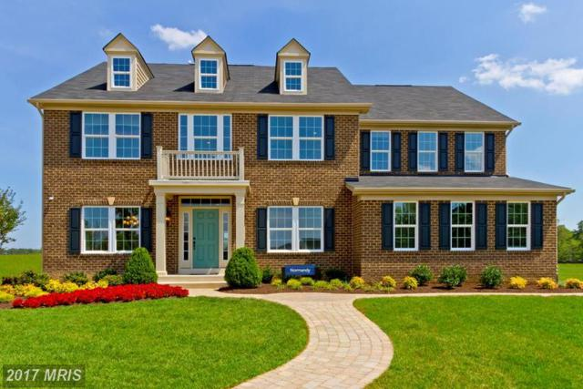 149 Hermitage Drive, Fredericksburg, VA 22407 (#SP9972715) :: LoCoMusings