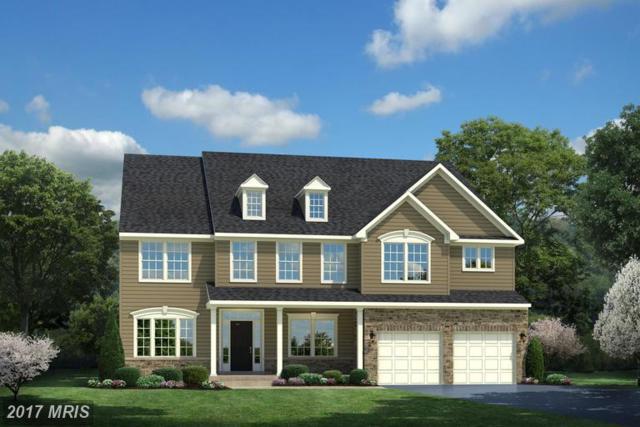 151 Hermitage Drive, Fredericksburg, VA 22407 (#SP9972864) :: LoCoMusings