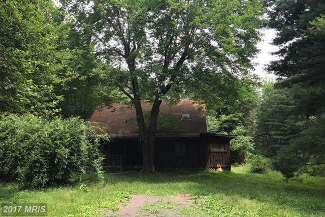 11330 Chancellor Meadows Lane, Locust Grove, VA 22508 (#SP9978873) :: LoCoMusings