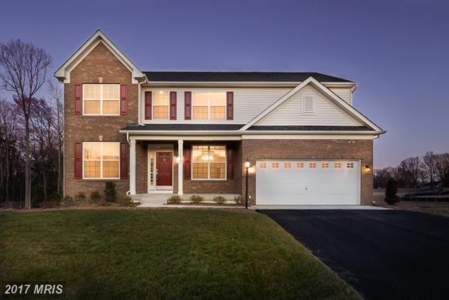 11317 Baron Drive, Spotsylvania, VA 22408 (#SP9982448) :: LoCoMusings