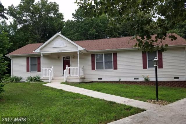 5601 Lucas Street, Fredericksburg, VA 22407 (#SP9986829) :: Dart Homes