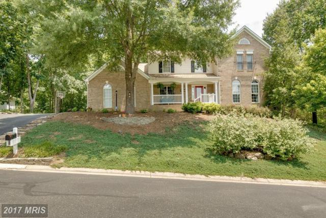 12819 Willow Point Drive, Fredericksburg, VA 22408 (#SP9987994) :: Network Realty Group