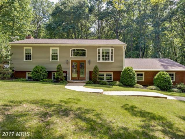 13404 Misty Way, Fredericksburg, VA 22407 (#SP9989171) :: Pearson Smith Realty