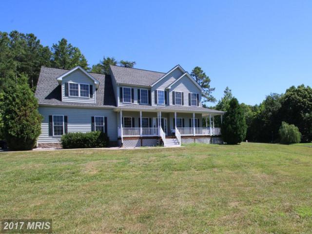 7901 South Woods Drive, Fredericksburg, VA 22408 (#SP9989666) :: LoCoMusings