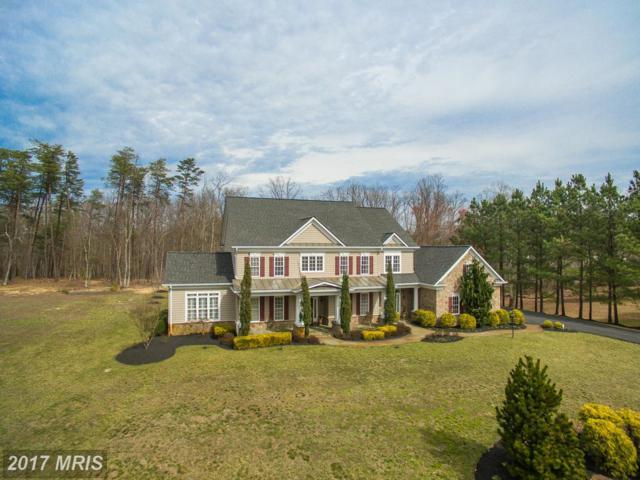 12651 Hidden Hills Lane, Fredericksburg, VA 22407 (#SP9990466) :: LoCoMusings