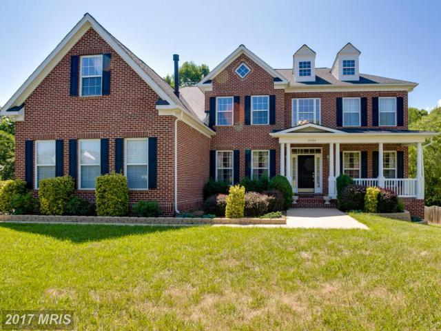10404 Rolling Ridge Drive, Spotsylvania, VA 22553 (#SP9993309) :: LoCoMusings