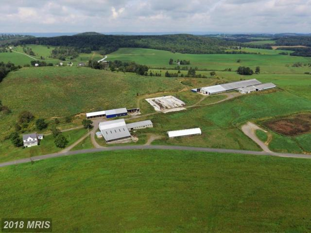 1161 Geiger Road, Friedens, PA 15541 (#SS10347163) :: The Withrow Group at Long & Foster
