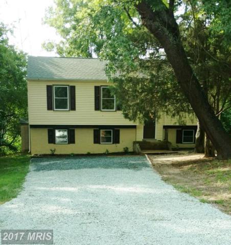 2002 Schooner Drive, Stafford, VA 22554 (#ST10000695) :: Green Tree Realty
