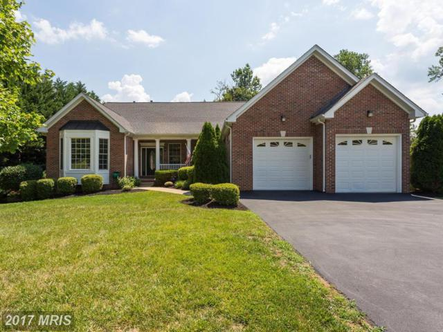 3 Rippling Water Court, Stafford, VA 22554 (#ST10001359) :: Pearson Smith Realty