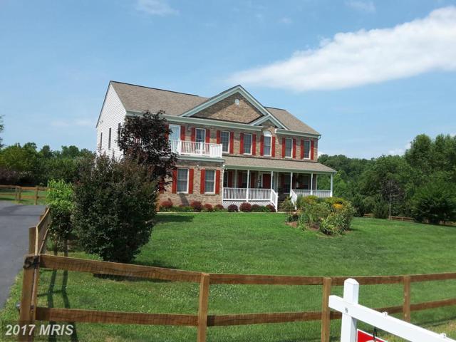 54 Equestrian Drive, Stafford, VA 22556 (#ST10005663) :: Pearson Smith Realty