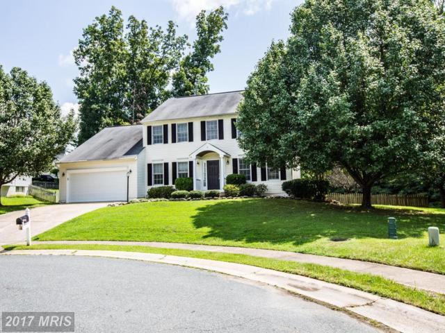 5 Basalt Drive, Fredericksburg, VA 22406 (#ST10005708) :: Pearson Smith Realty