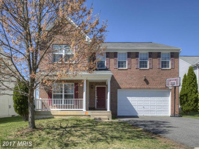 5 Quantum Way, Fredericksburg, VA 22406 (#ST10010036) :: Pearson Smith Realty