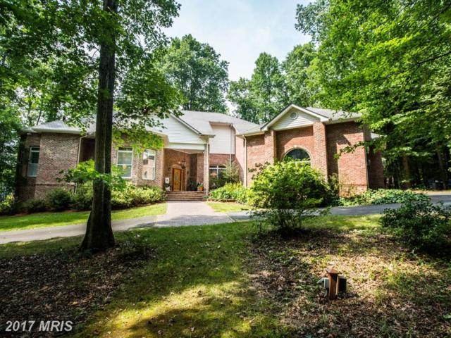 185 Walden Lane, Fredericksburg, VA 22406 (#ST10011336) :: Green Tree Realty