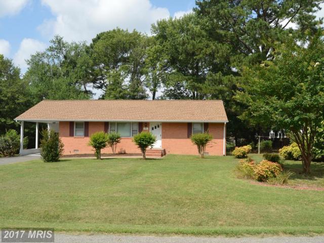 811 Payton Drive, Fredericksburg, VA 22405 (#ST10011498) :: Green Tree Realty