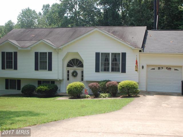 1606 Sherwood Drive, Fredericksburg, VA 22405 (#ST10012743) :: Pearson Smith Realty