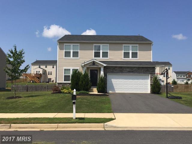 40 Ivy Spring Lane, Fredericksburg, VA 22406 (#ST10014096) :: Pearson Smith Realty